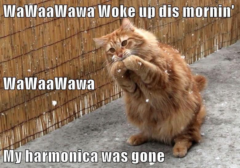 WaWaaWawa