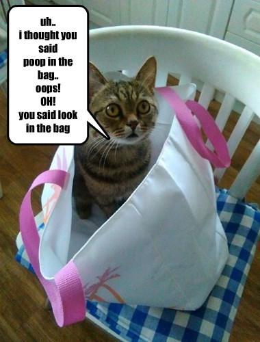 caption Cats - 8756090624