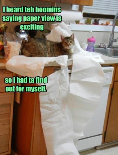 caption Cats - 8756094208