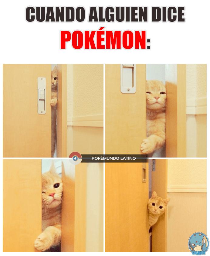 alguien dice pokemon