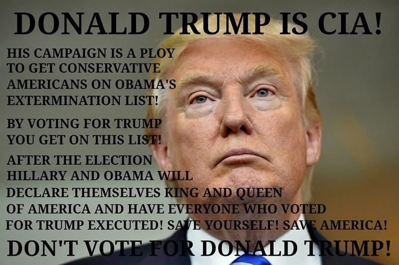 poltics donald trump Conspiracy Theory america - 8756246784