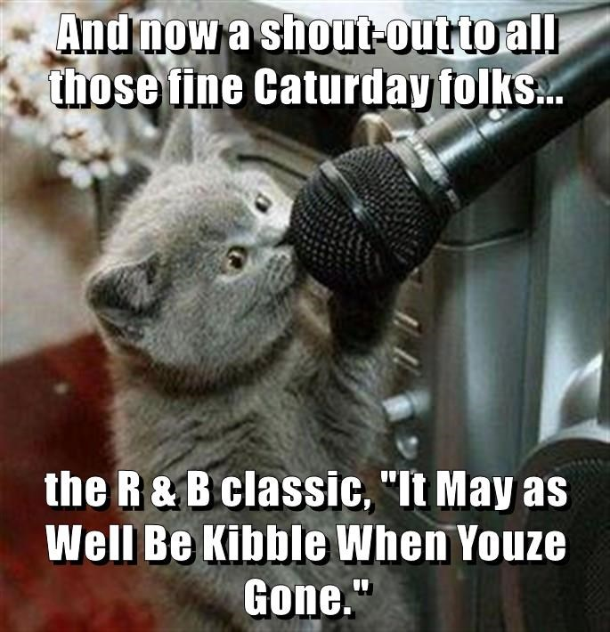 "And now a shout-out to all those fine Caturday folks...  the R & B classic, ""It May as Well Be Kibble When Youze Gone."""