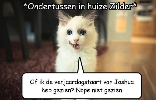 *Ondertussen in huize Zilder* Of ik de verjaardagstaart van Joshua heb gezien? Nope niet gezien