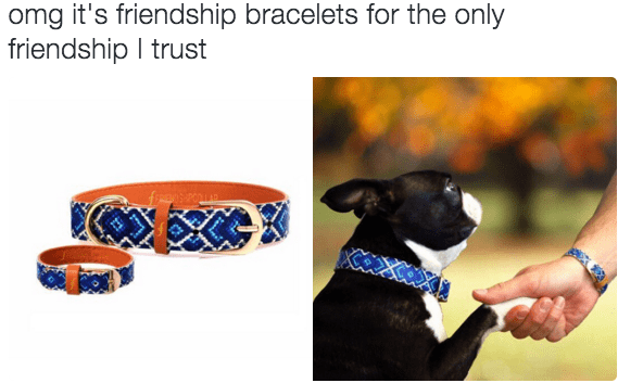 friendship dogs - 8756417280