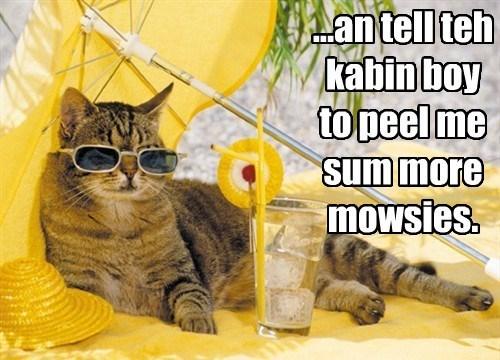 ...an tell teh kabin boy to peel me sum more mowsies.