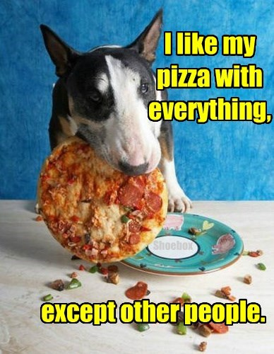 dogs,pizza,everything,caption