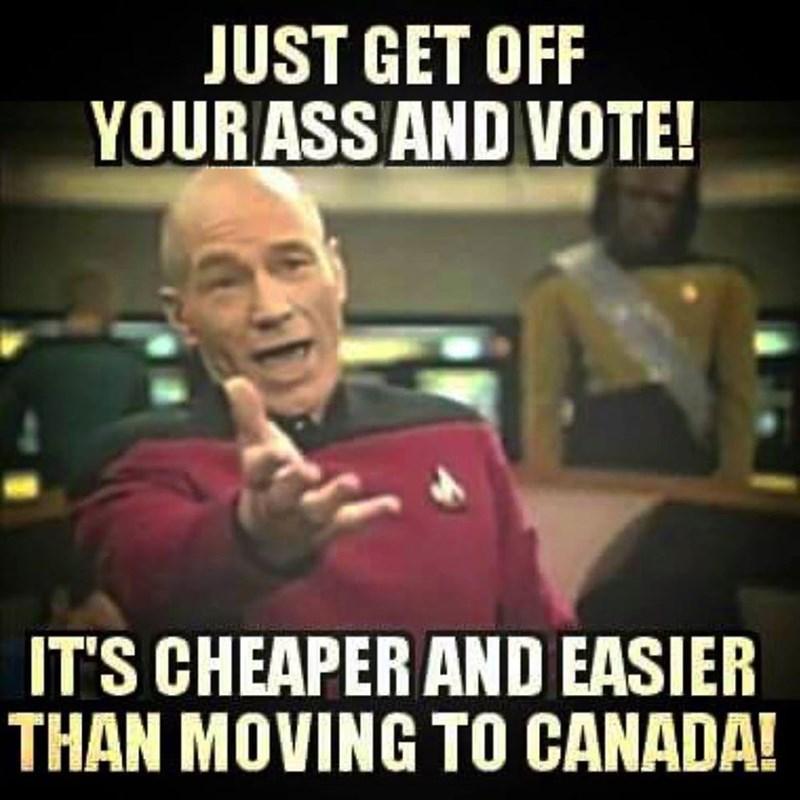 voting politics - 8756965632