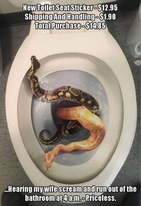 wtf toilet snakes - 8757028096