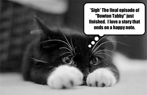 downton abbey caption Cats - 8757040640