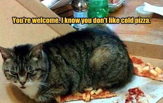 You're welcome. I know you don't like cold pizza.