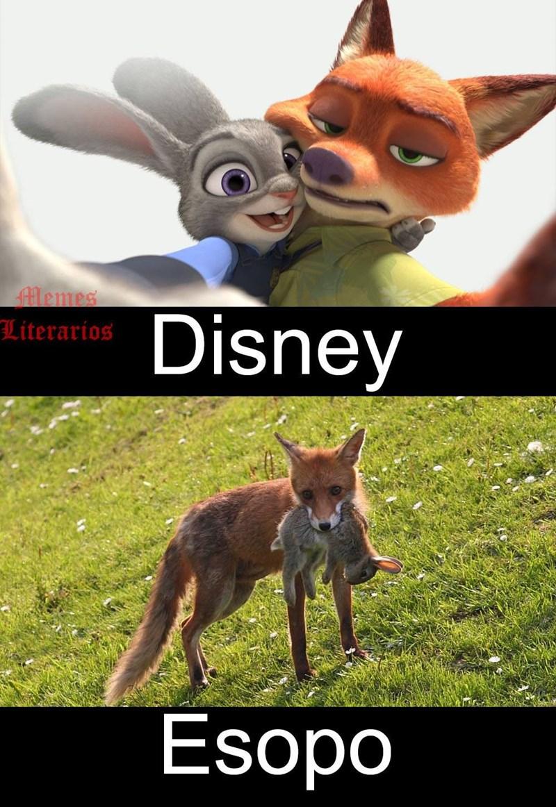 diferencias de cuentos