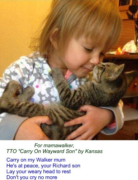 "For mamawalker, TTO ""Carry On Wayward Son"" by Kansas"