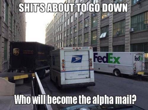 fed ex usps UPS - 8758376192
