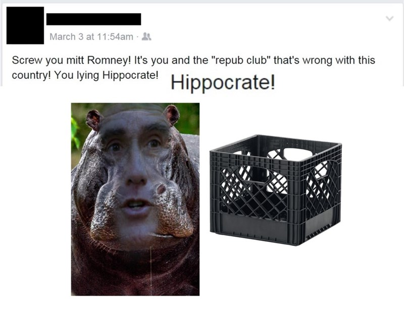 pun Mitt Romney facebook politics - 8758443264