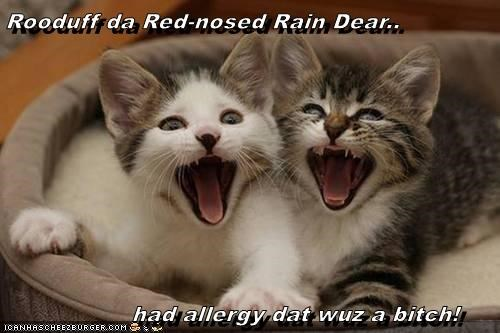 Rooduff da Red-nosed Rain Dear..              had allergy dat wuz a bitch!