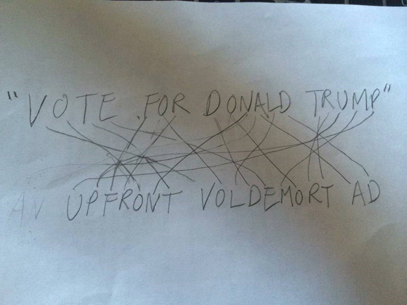 voldemort,donald trump,politics