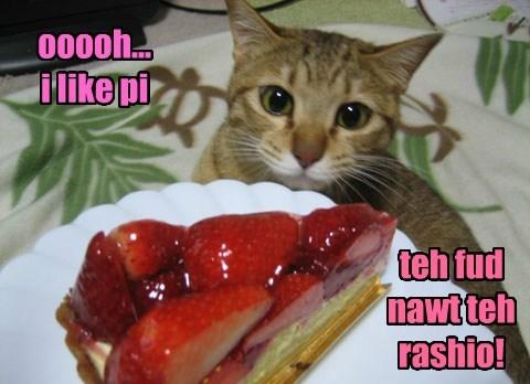 pie caption Cats - 8759024640