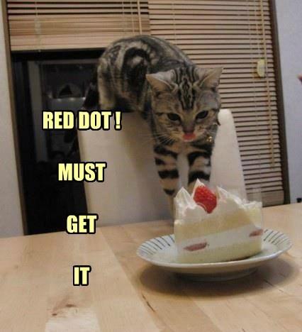 cat red dot caption - 8759267584