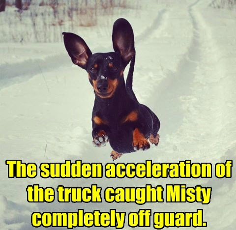 The sudden acceleration of the truck caught Misty completely off guard.
