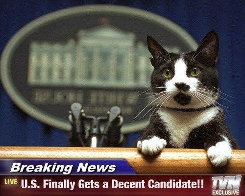 Breaking News - U.S. Finally Gets a Decent Candidate!!