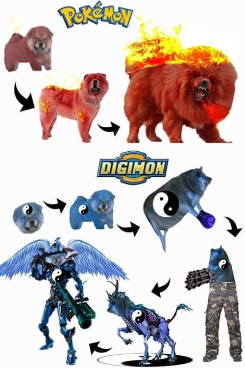 pokemon memes pokemon vs digimon evolution