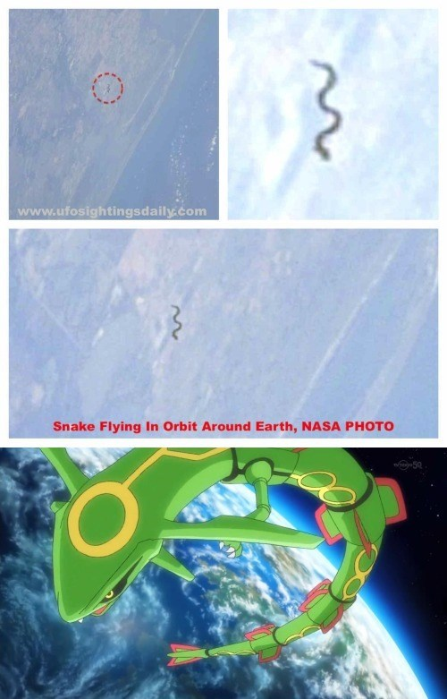 space rayquaza snake - 8759607808