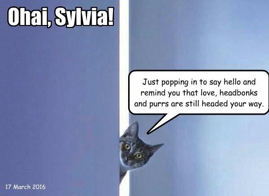Ohai, Sylvia!