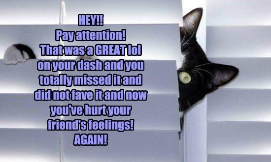 caption Cats - 8759783168