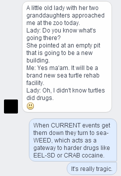 text,turtles,puns