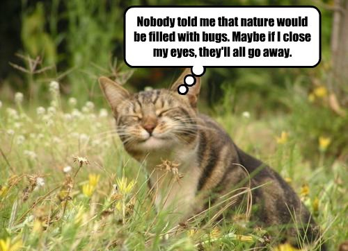 Nobody told me that nature would be filled with bugs. Maybe if I close my eyes, they'll all go away.