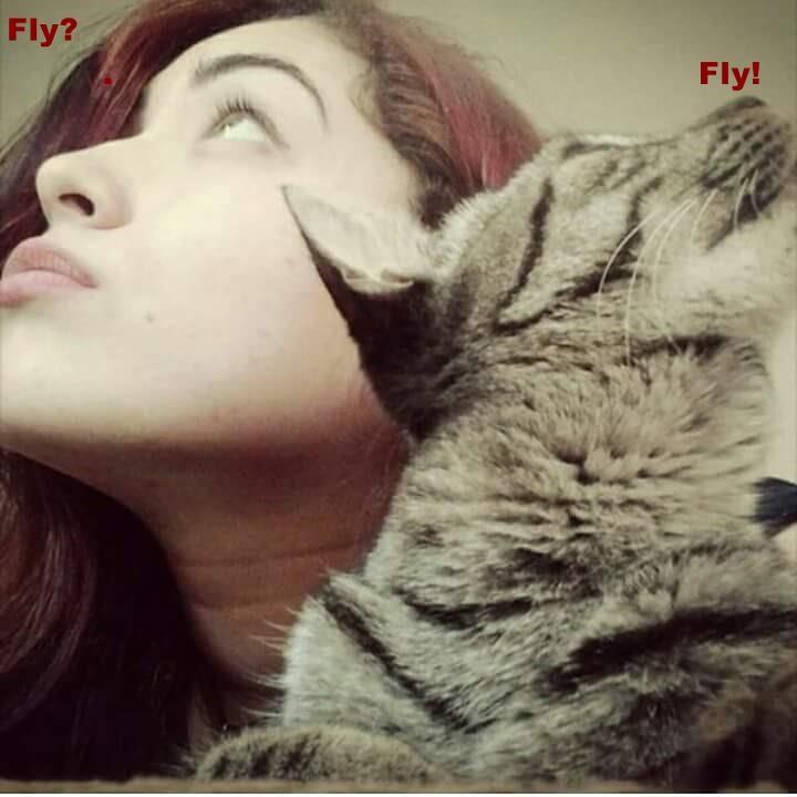 Fly?                                                                            .                                                       Fly!