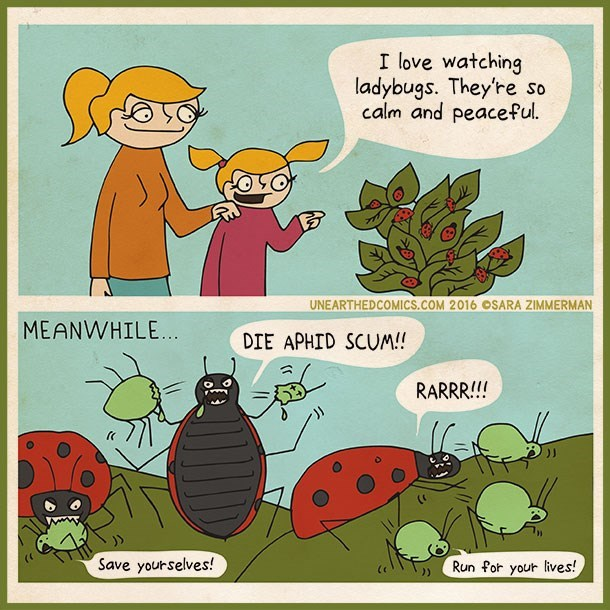 web comics lady bugs Adorable