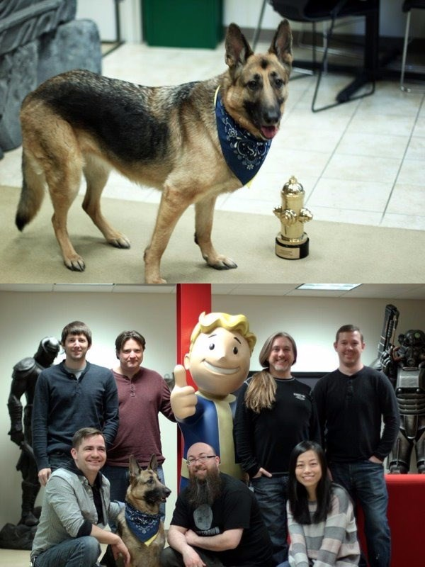 dogmeat is top video game dog