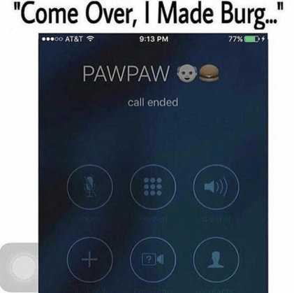 "Text - ""Come Over, I Made Burg. ..00 AT&T 9:13 PM 77%D+ PAWPAW call ended 24"