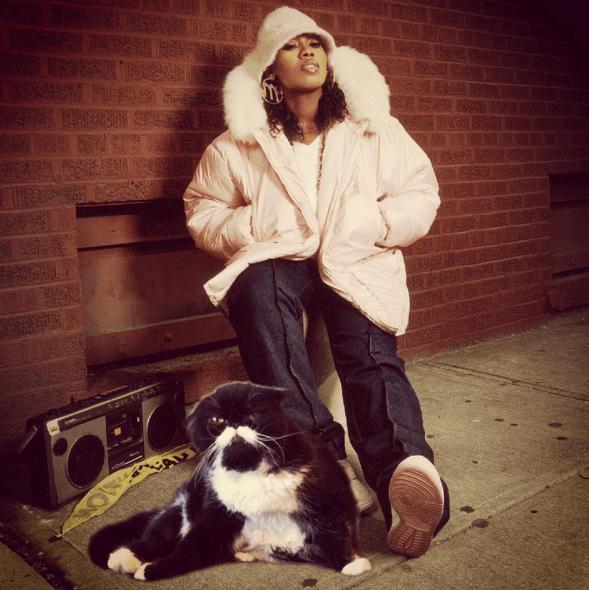 kyle the cat - Fur - SAEW