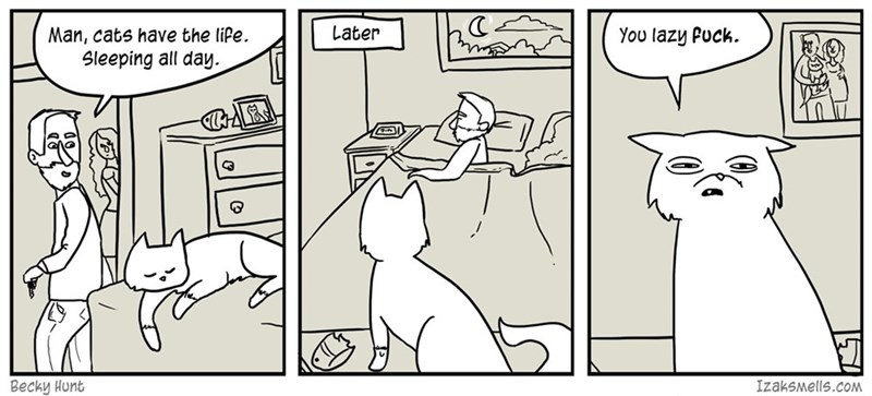 web comics cats sleeping Get up and Make Me Some Dinner!