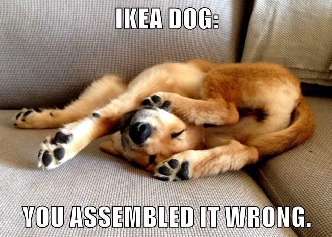 dogs assembled ikea wrong caption - 8761131008