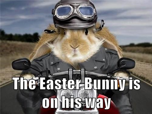 The Easter Bunny is on his way