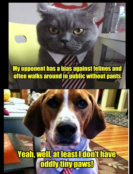 dogs caption Cats - 8761411072