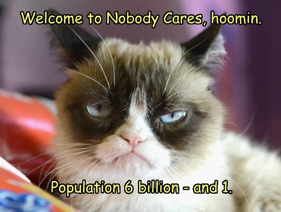 Grumpy Cat,nobody cares,caption,Cats