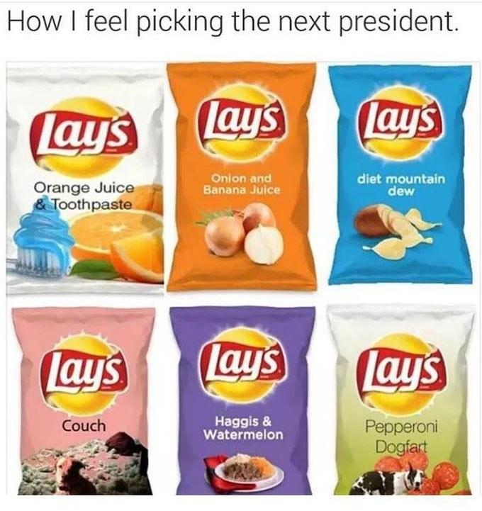 chips,politics