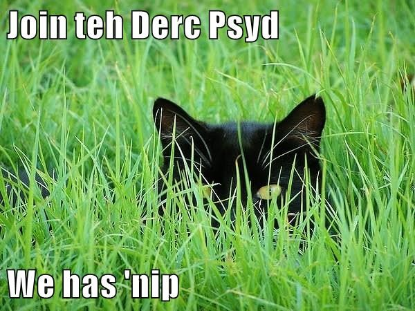 animals caption Cats - 8761788672