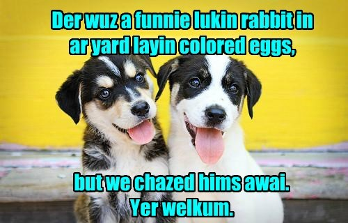 caption chase dogs eggs colored rabbit - 8762165248