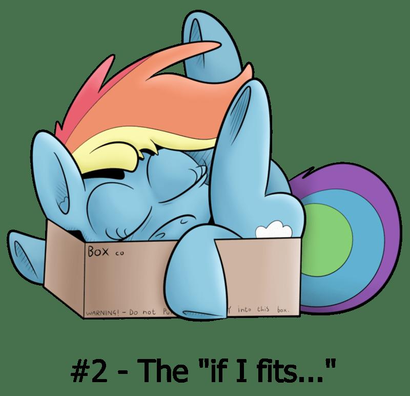 if i fits i sits rainbow dash - 8762283776