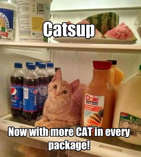 caption Cats - 8762407680