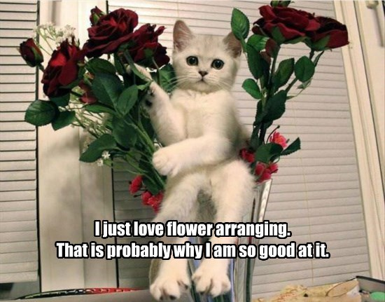 I just love flower arranging. That is probably why I am so good at it.