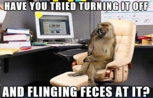 tech support it monkey - 8762540288