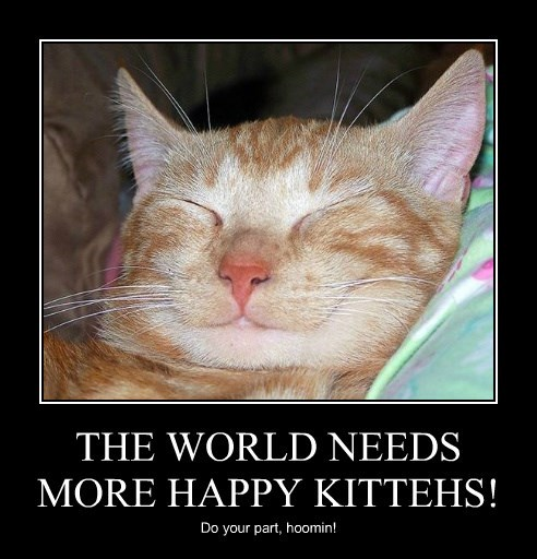 THE WORLD NEEDS MORE HAPPY KITTEHS!