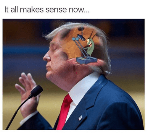 donald trump plankton politics - 8762841856