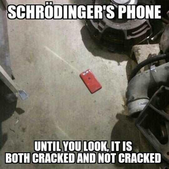 phones schrodinger - 8762843392